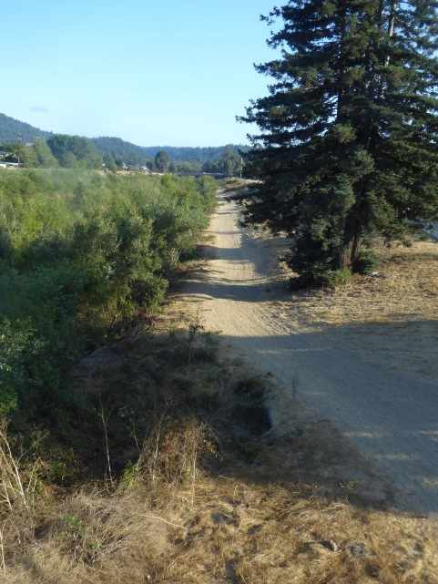 New path along East Bank of riverine stretch